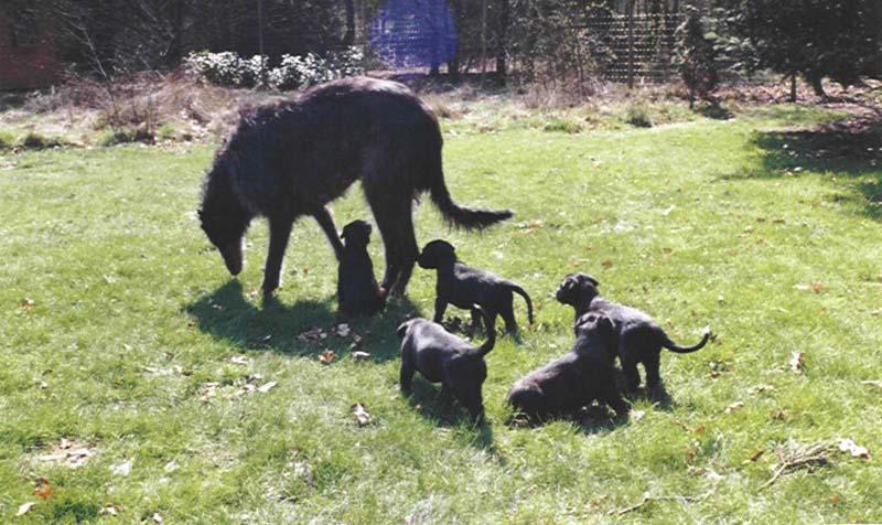 Prudence op stap met haar kinders