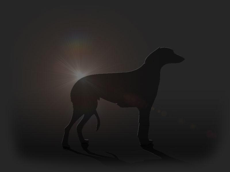 Deer_licht_2