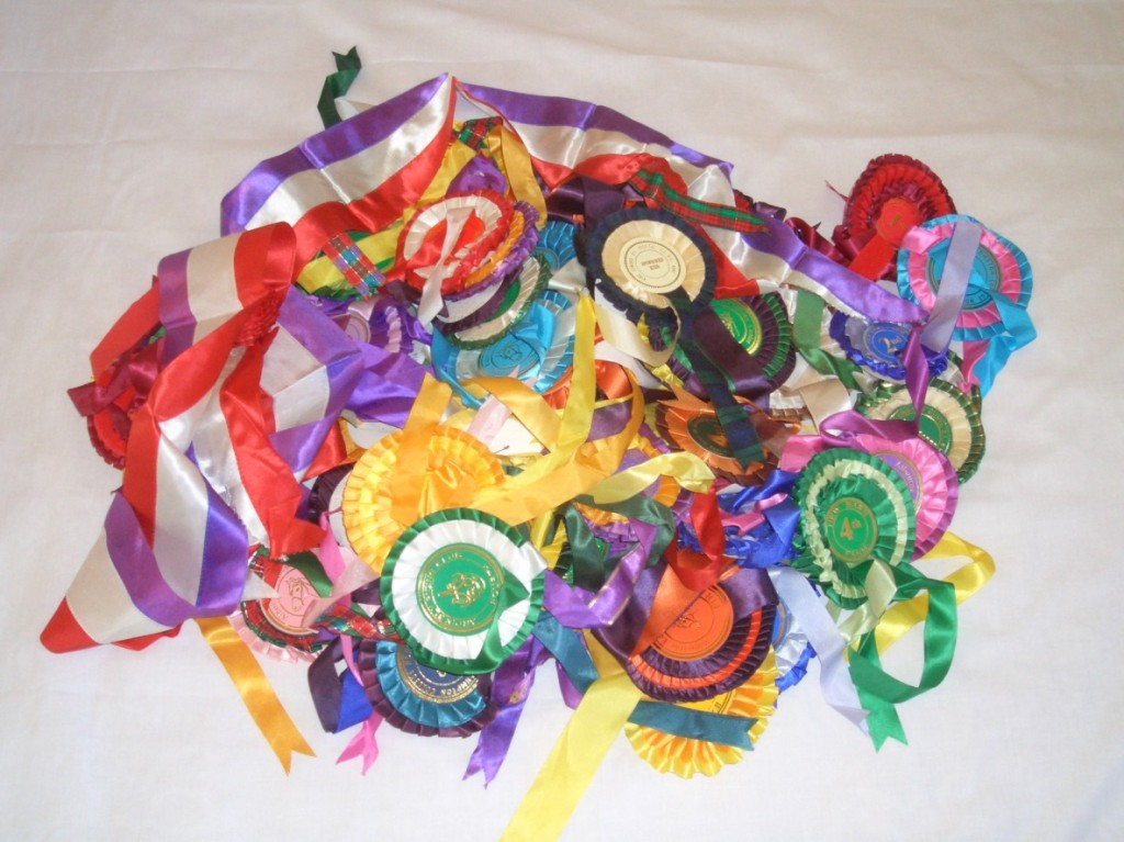 2002 1 heap of rosettes